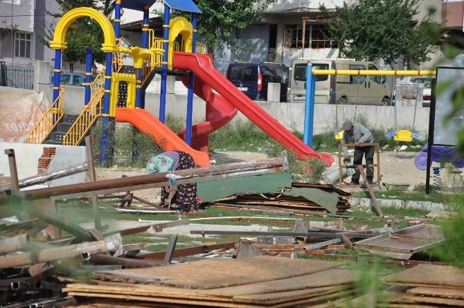 Çerkezköy'de Parktaki Ağaçların Zarar Görmesi