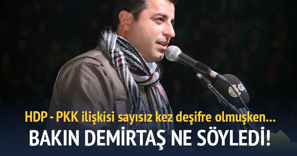 Demirtaş: Sırtımızı PKK'ya dayamadık