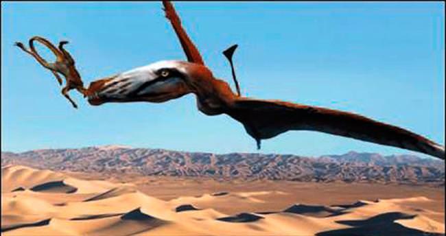 Devasa uçan sürüngen fosili ABD'de bulundu