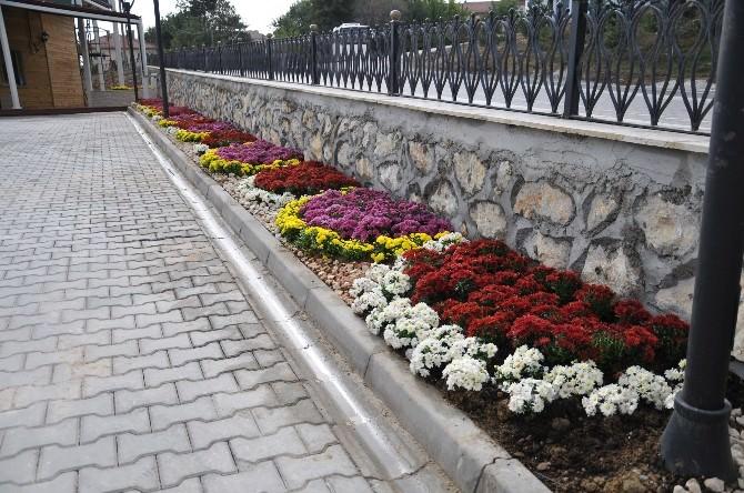 Yeni Projeler Çiçeklerle Süsleniyor