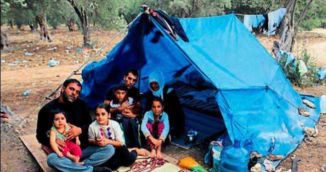 Naylon çadırlarda 3 aile, 2 dram