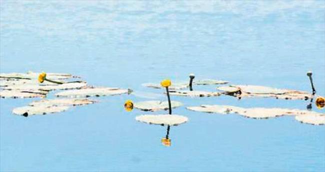 Bağlama Gölü koruma altına alınmayı bekliyor