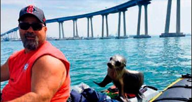 Balıkçının sürpriz bir misafiri var