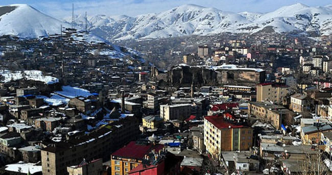 Bitlis seçim sonuçları - 1 Kasım 2015 Genel Seçimleri oy oranları