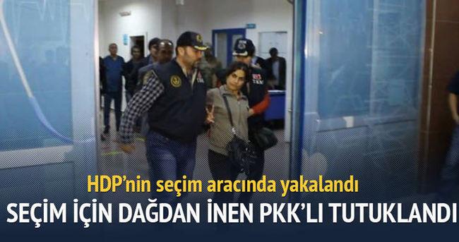 Seçim için dağdan inen PKK'lı yönetici yakalandı