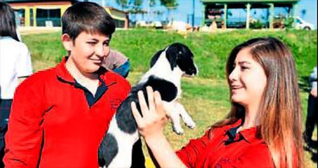Gençlerin hayvan sevgisi bambaşka