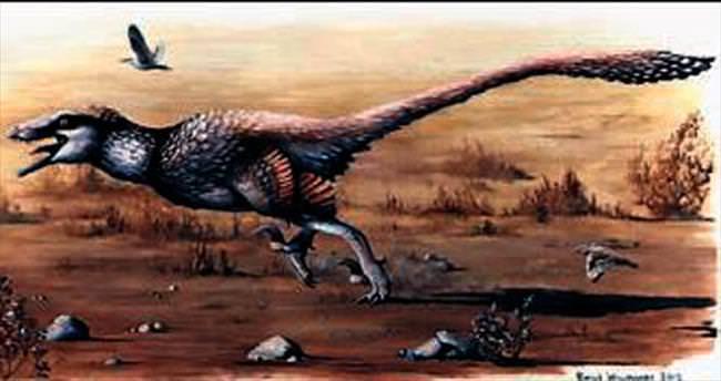 Orak tırnaklı yeni bir dinozor türü bulundu