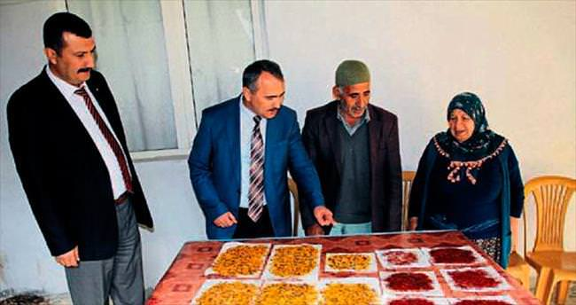 Safran üreticisine devlet desteği