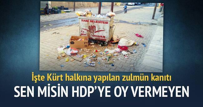 Sen misin HDP'ye oy vermeyen