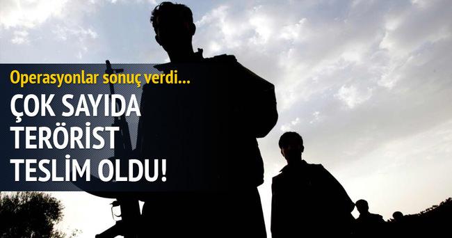 11 PKK militanı teslim oldu!