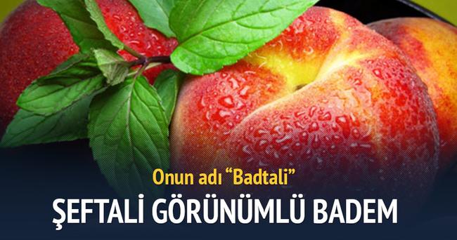 Görünümü şeftali, tadı badem: Badtali