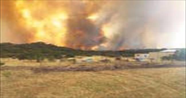 Avustralya'da tarla yandı, 4 kişi öldü