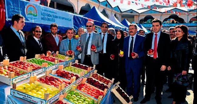 Göksun'da 4. Elma Festivali
