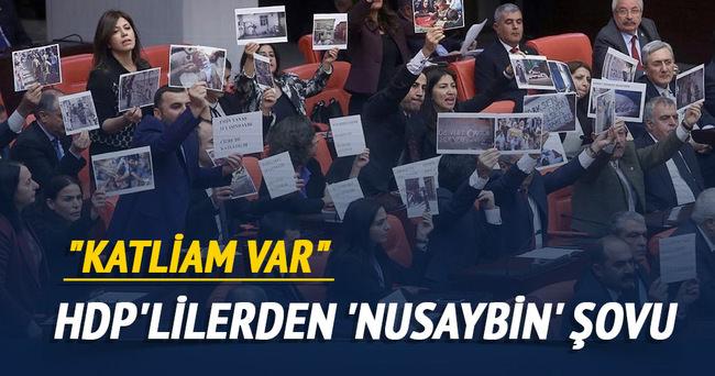 HDP'lilerden Nusaybin şovu