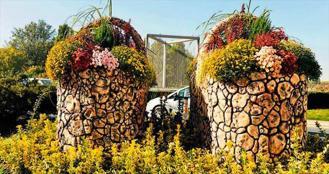 4 milyon kış çiçeği başkenti süslüyor