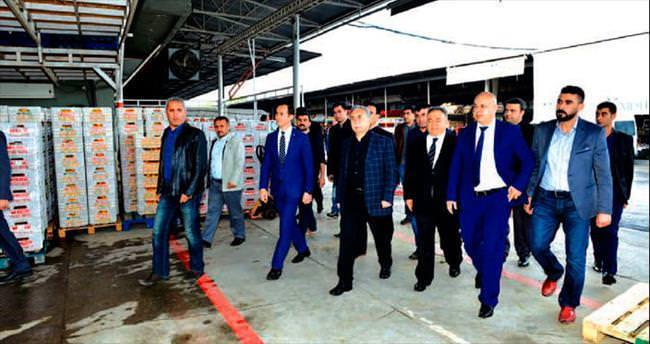 Türkiye'nin önemli tarım üretim merkezi: Çukurova