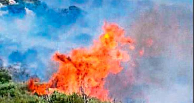 Kaş Sarıbelen'de orman yangını