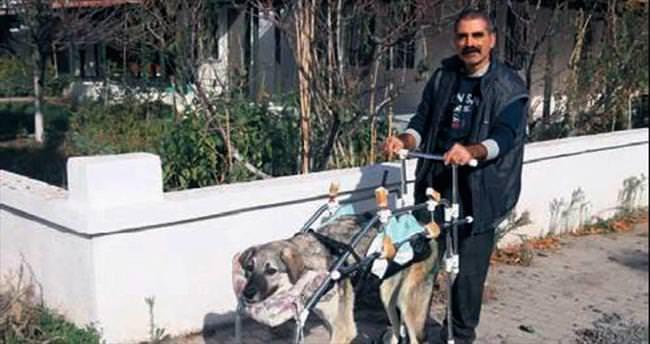 Felçli Karaoğlan'a tekerlekli sandalye