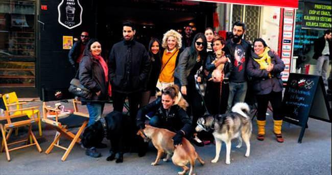 Sokak hayvanları için bitpazarı
