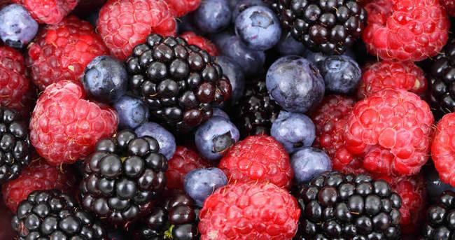 Yaşlanma karşıtı besinler