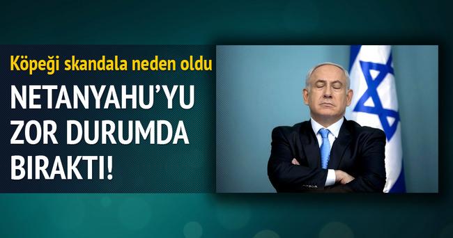 Netanyahu'nun köpeği konuklarını ısırdı
