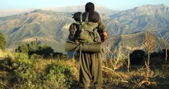 Hakkâri'de 1 PKK'lı yakalandı