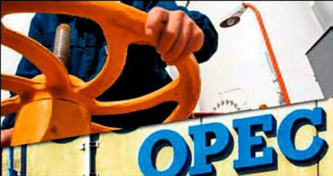 OPEC ülkeleri hızla güç kaybediyor