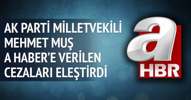 Mehmet Muş A Haber'e verilen cezaları eleştirdi