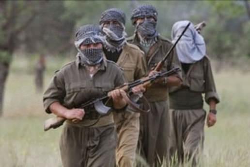 Şırnak'ta 7 PKK militanı teslim oldu