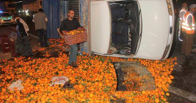 Kazadan kurtuldu, mandalinaların telaşına düştü