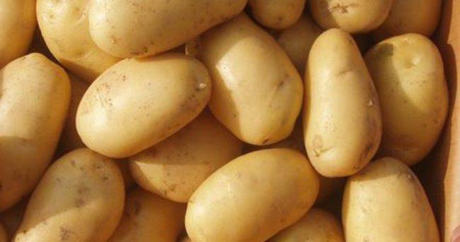 Patates fiyatlarında büyük düşüş!