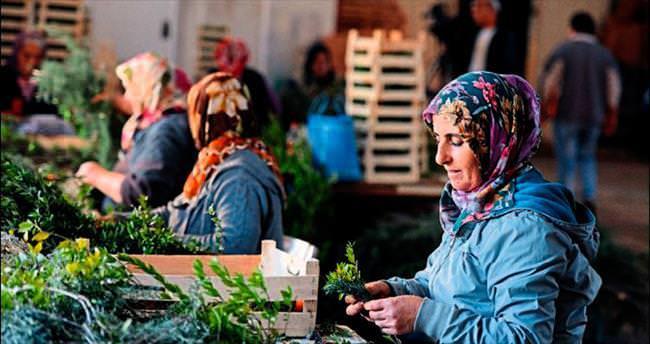Avrupa'nın Noel süsü Antalya'dan