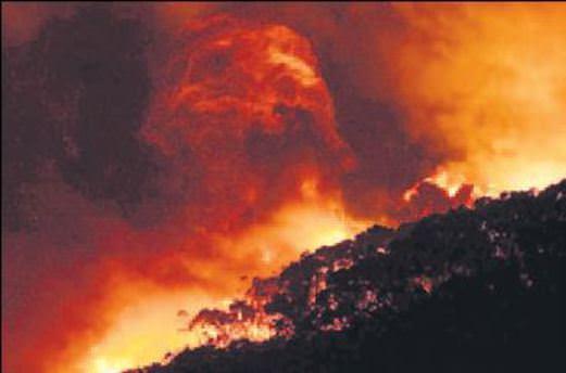 Noel gecesi yangın 116 evi kül etti