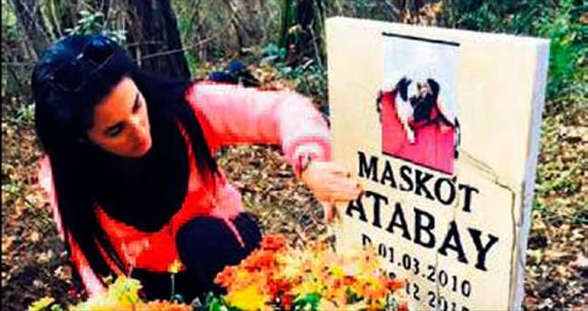Ormanda köpek mezarı tartışması