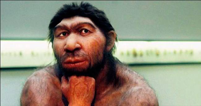Alerjilerimiz Neandertal insanından miras kaldı