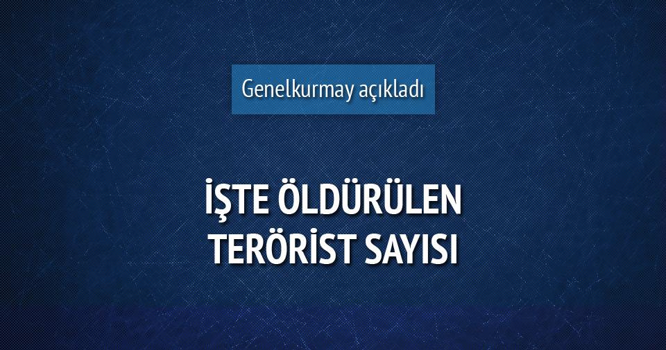 Cizre, Sur ve Silopi'de 465 terörist öldürüldü