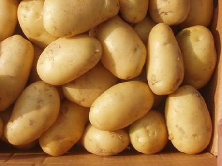 Anne adaylarına patates uyarısı