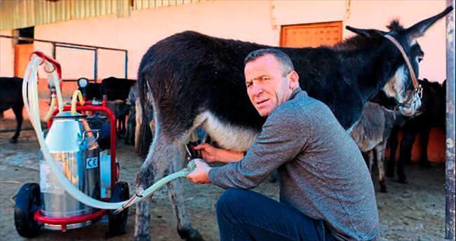 Antalya'dan Türkiye'ye eşek sütü