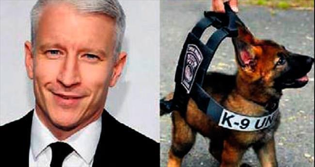 CNN'in sunucusundan köpeklere çelik yelek