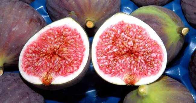 Yüksek kolesterole doğal çözüm