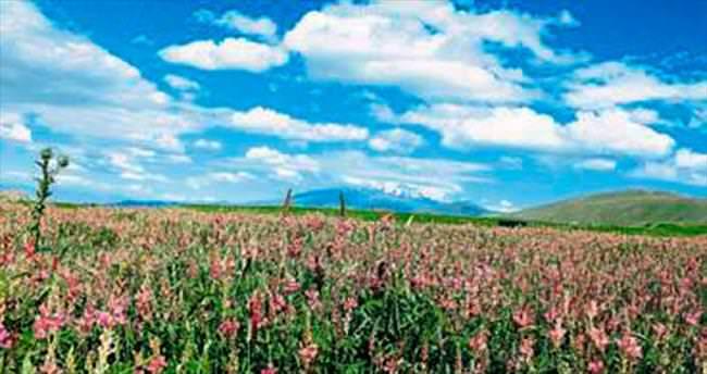 Anadolu çocukları doğayı fotoğrafladı