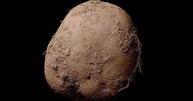 Bu patates 1 milyon dolar!