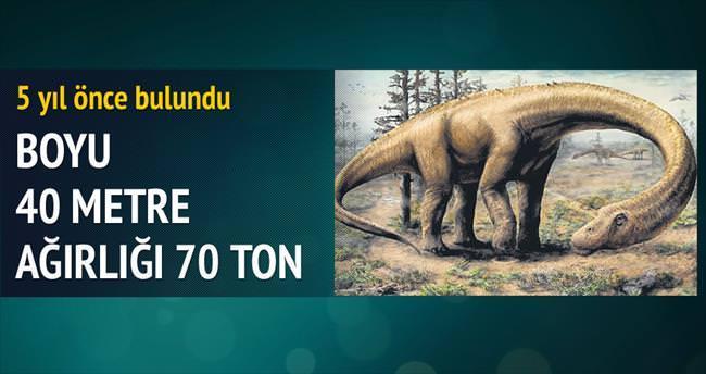 Boyu 40 metre, ağırlığı 70 ton