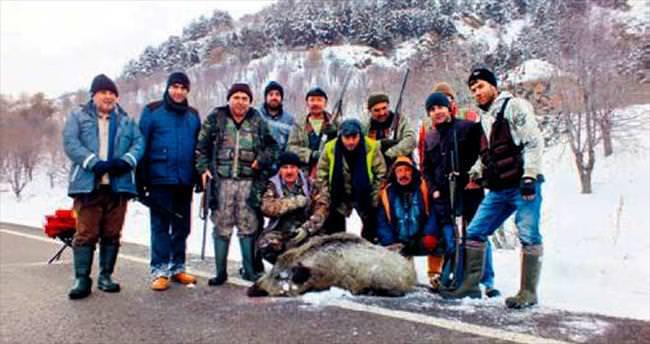 Çubuk'ta yaban domuzu avı düzenlendi