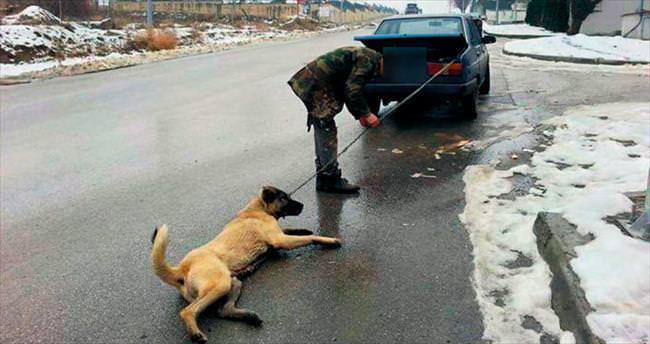 Köpeğe İşkence vicdanları yaraladı