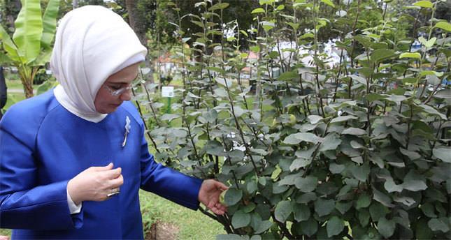 Emine Erdoğan Peru'da botanik bahçesini inceledi