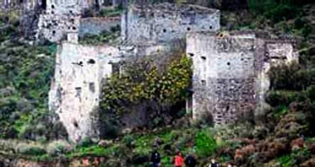 Tarihi yapıları ağaçlar bozuyor
