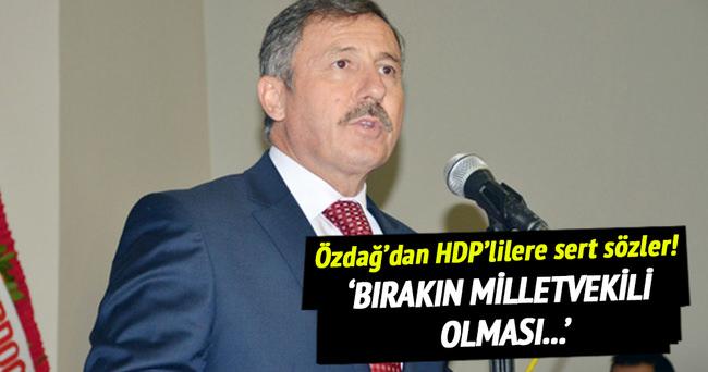 Özdağ'dan HDP'lilere sert sözler!