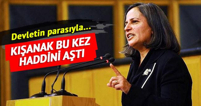Belediye mezarlığında sözde PKK şehitliği!