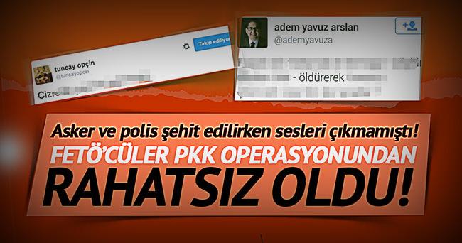 FETÖ'cüler PKK operasyonundan rahatsız oldu